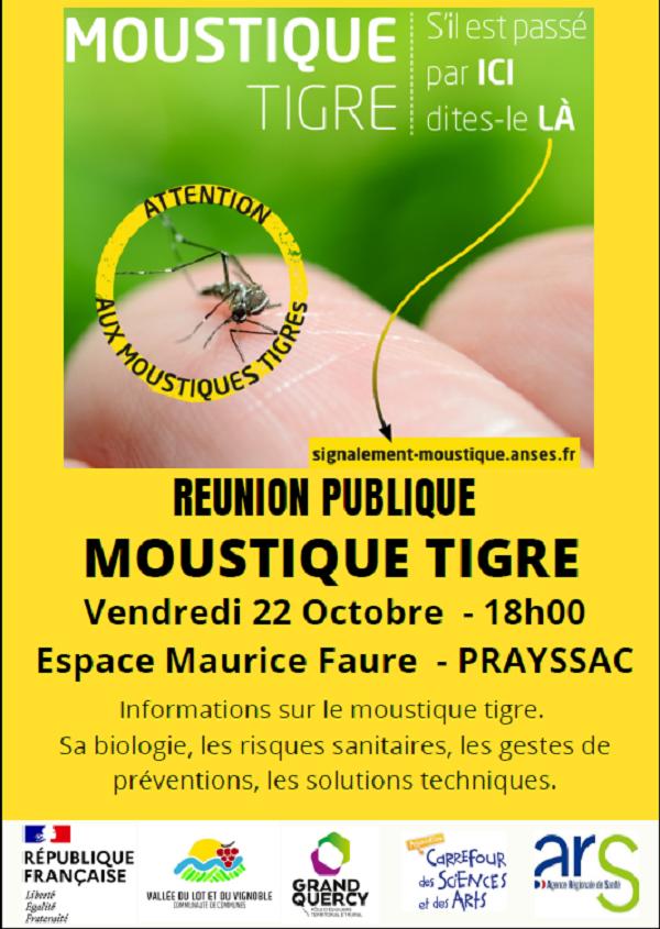 1022 moustique tigre