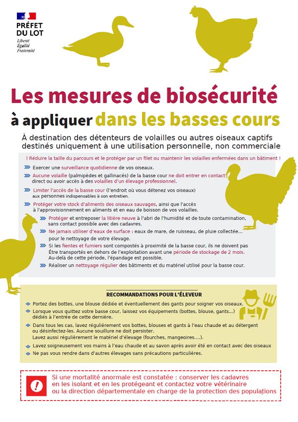 Recommandatiosn influenza aviaire